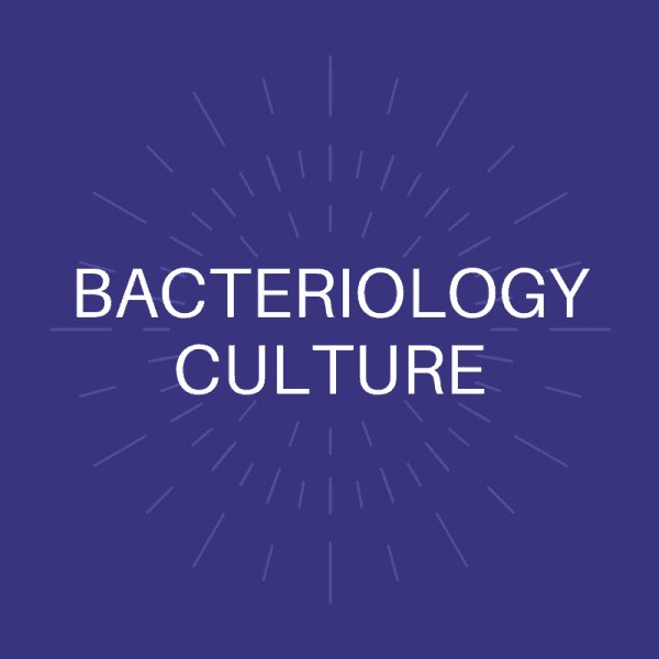 Bacteriology Culture